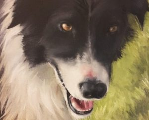 Border collie in olieverf door Tina Alvenaar